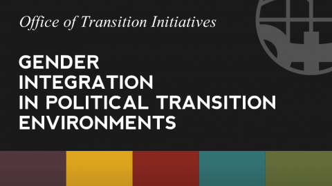 Gender in Political Transition Environments